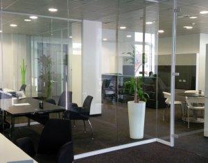 Birou 181mp open space in Business Center, zona Dorobantilor