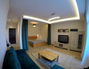 Apartment 1 rooms for rent in Floresti
