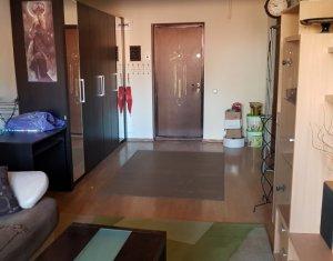 Vanzare aparatment 1 camera, etaj 1, Plopilor, zona USAMV