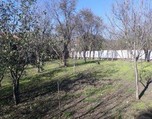 Teren Constructie Casa in Dezmir zona retrasa Asfalt Autobuz