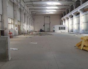 Espace Industriel à louer dans Cluj-napoca, zone Dambul Rotund