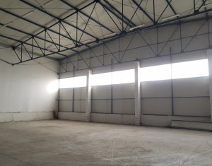 Espace Industriel à louer dans Cluj-napoca, zone Someseni