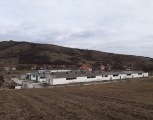 Telek eladó on Cluj-napoca, Zóna Apahida