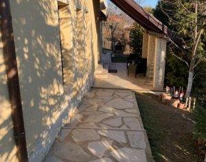 Casa cu gradina Stolna 1700 mp zona verde retrasa frumoasa