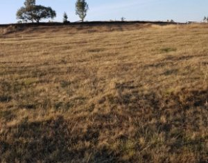 Land for sale in Marisel