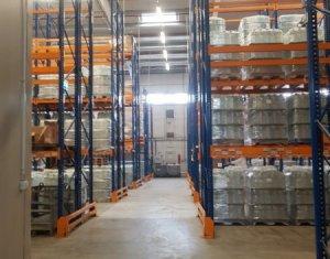 Espace Industriel à vendre dans Apahida