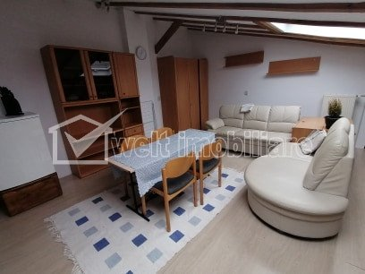 Apartment 1 rooms for rent in Cluj-napoca, zone Centru
