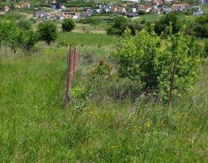 Telek eladó on Cluj-napoca, Zóna Borhanci