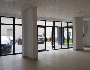 Vanzare spatiu comercial 85mp, parter de bloc nou, str. Paris la inceput