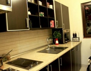 Apartament 1 camera, Pet Friendly, Mihai Viteazu