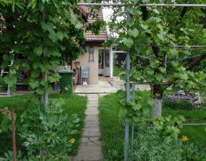 Casa compusa din 5 apartamente, gradina roditoare 380 mp, Marasti