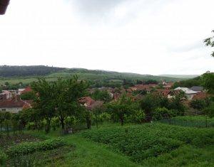 Maison 3 chambres à vendre dans Baciu