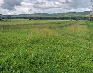 teren intravilan, 1600 mp, zona Avram Iancu