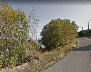 Terrain à vendre dans Muntele Baisorii