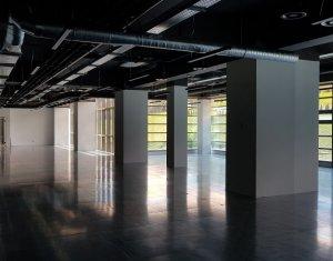 Birouri moderne in cladire clasa A, zona Taietura Turcului