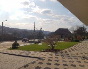 Espace Commercial à louer dans Cluj-napoca, zone Borhanci