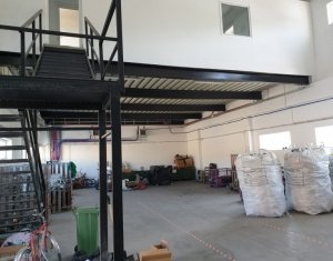 Industrial space for rent in Floresti