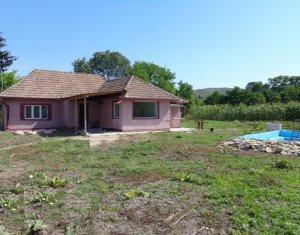 Casa 2 dormitoare, 1000 mp teren, Gadalin, aer curat, liniste, spatiu, utilitati