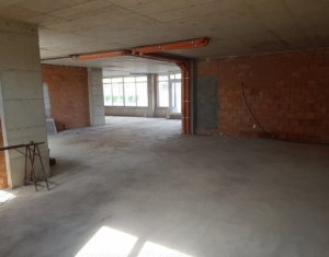 Commercial space for sale in Cluj-napoca, zone Someseni