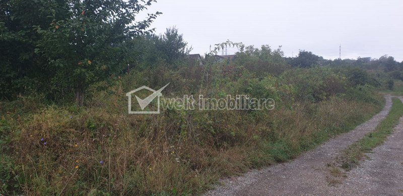 Teren zona Mihai Romanu, Buna Ziua