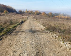 Terrain à vendre dans Cluj-napoca, zone Europa