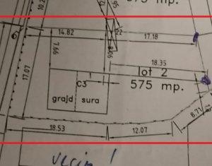 Beneficiaza de dezmembrarea unei curti si achizitioneaza 575 mp in Dezmir