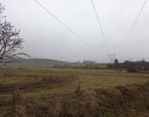 Land for sale in Salistea Noua