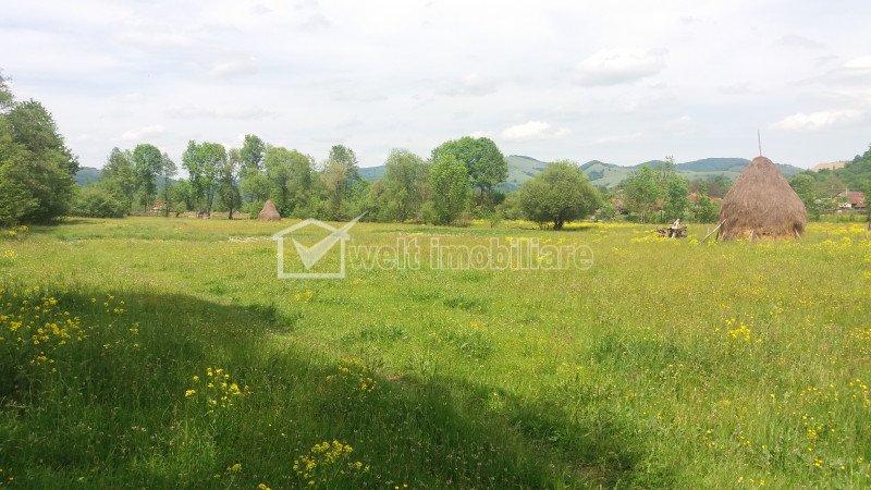 Teren Valea Draganului, 18.000 mp, oportunitate de investitie deosebita