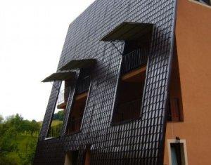 Posibilitate investitie, Pensiune functionala, 10 camere - Valea Draganului