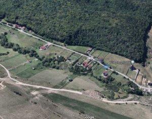 Teren pentru casa/duplex in Floresti