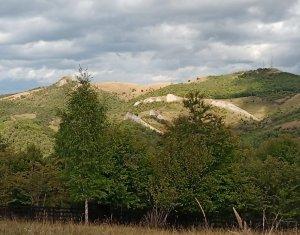 Baisoara - Muntele Filii, acces prin Moara de Padure, 4324 mp, deosebit