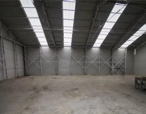 Industrial space for rent in Baciu