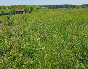 Terrain à vendre dans Cluj-napoca, zone Sopor