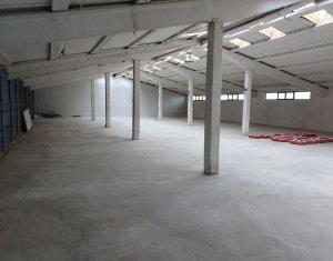Espace Industriel à louer dans Floresti