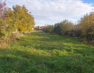 Terrain à louer dans Cluj-napoca, zone Buna Ziua