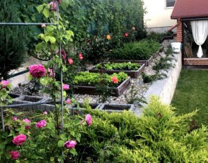 House 6 rooms for sale in Cluj-napoca, zone Dambul Rotund