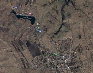 Teren de vanzare in Chinteni, 24000 mp