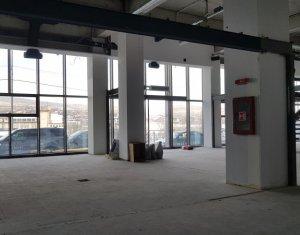Espace Commercial à louer dans Cluj-napoca, zone Gruia