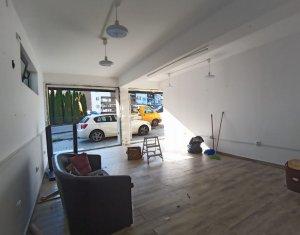 Espace Industriel à vendre dans Cluj-napoca, zone Manastur