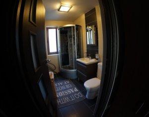Apartament cu 2 camere de inchiriat, 50 mp, parter inalt, Marasti