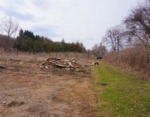 Vanzare Teren-Ferma de 3,26ha (32.600mp) in zona Gilau, Cluj