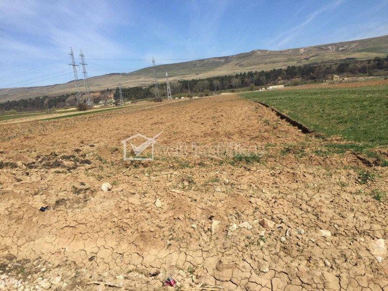 Vanzare teren intravilan 5800 mp, front 24 ml, zona Iazului