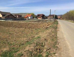 Telek eladó on Cluj Napoca, Zóna Floresti