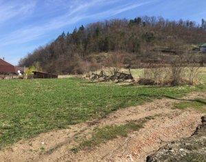Vanzare teren intravilan 2500 mp, front 30ml, sat Tauti