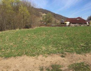 Vanzare teren 1200mp, front 15ml, satul Tauti