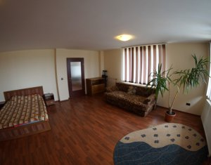 Inchiriere apartament cu 1 camera foarte spatios in Andrei Muresanu