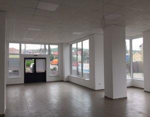 Espace Commercial à louer dans Cluj Napoca, zone Gara