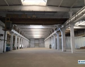 Industrial space for rent in Cluj Napoca, zone Dambul Rotund