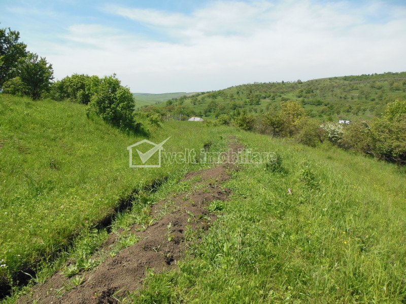 Land for sale in Moristi
