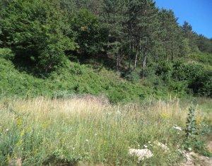 Vanzare teren de 2200mp cu padure in Floresti, zona Narciselor